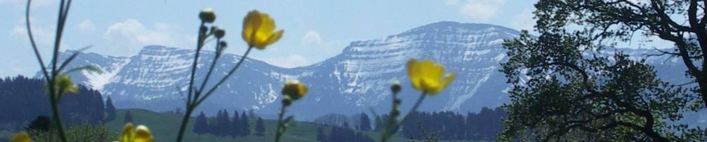 alpenblick-lindenberg.de